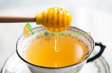 http://matongsonla.vn - tác dụng của trà xanh mật ong