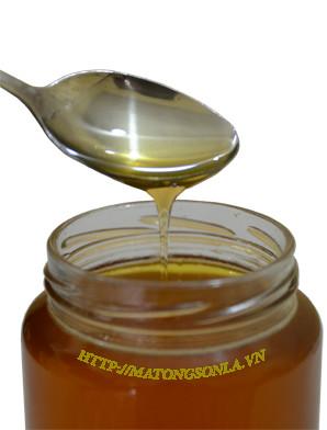 mua mật ong hoa rừng tại nhà phân phối tin cậy - cơ sở cung cấp