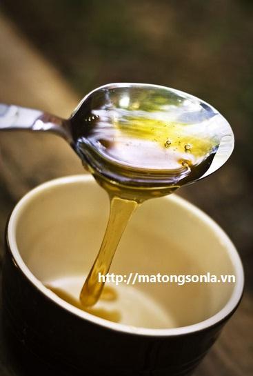 http://matongsonla.vn - Mật ong rừng nguyên chất Sơn La