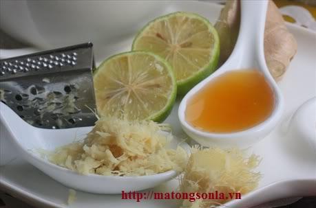 nguyen-lieu-lam-siro-mat-ong-chanh-gung