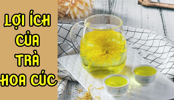 Những tác dụng của trà hoa cúc mật ong