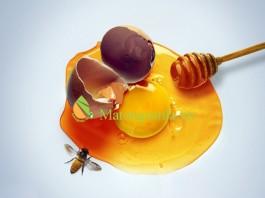 http://matongsonla.vn - Tác dụng của mật ong và trứng ga