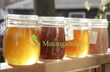 https://matongsonla.vn - phân biệt màu sắc của mật ong rừng và mật ong nguyên chất