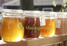 http://matongsonla.vn - phân biệt màu sắc của mật ong rừng và mật ong nguyên chất