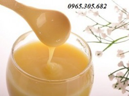 Sữa Ong chúa rẻ nhất Tại Hà Nội - Mua ngay