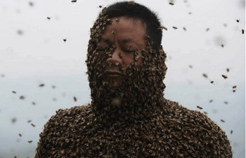 Ngoài mật ong ra thì những chú ong luôn tạo cho chúng ta những bất ngờ
