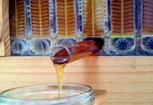 mật ong rừng nguyên chất tự nhiên