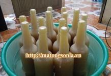 Mua mật ong ngâm chanh đào tại Hà Nội